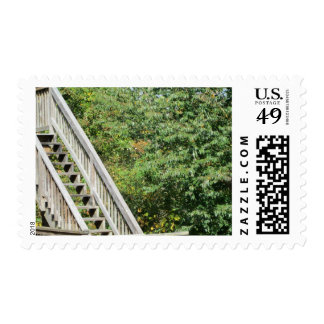 Nature Stairs Postage Stamp