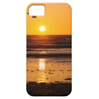 Nature Sunset Ocean Boulevard iPhone SE/5/5s Case