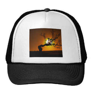 Nature Sunset Tree Piercing Light Trucker Hat