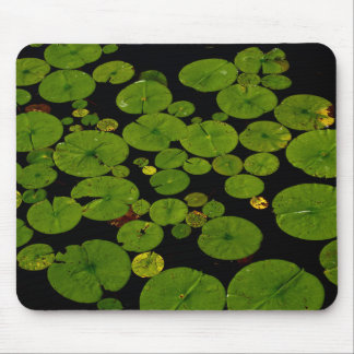Nature Themed, Green Leaves Of Water Lilies Withou Mouse Pad