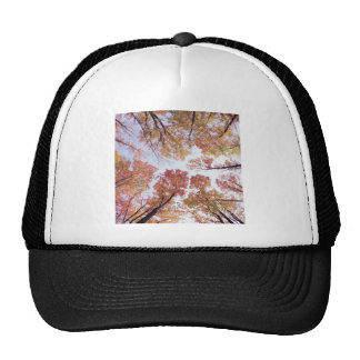 Nature Trees Autumn Red Sky Trucker Hat