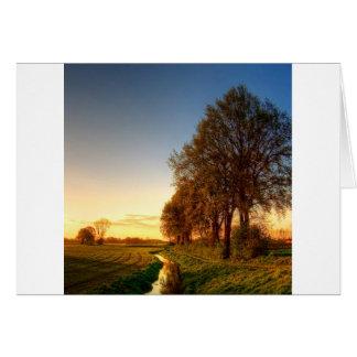 Nature Trees Farmland Night Light Card