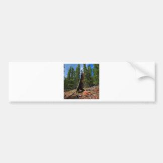 Nature Trees Hollow Caber Bumper Sticker