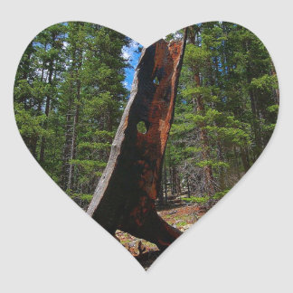 Nature Trees Hollow Caber Heart Sticker