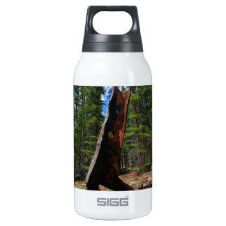 Nature Trees Hollow Caber Insulated Water Bottle