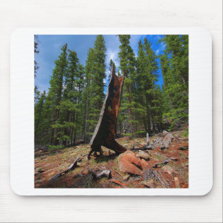 Nature Trees Hollow Caber Mouse Pad
