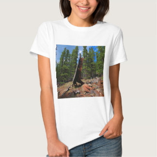 Nature Trees Hollow Caber T Shirt