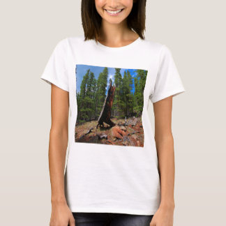 Nature Trees Hollow Caber T-Shirt
