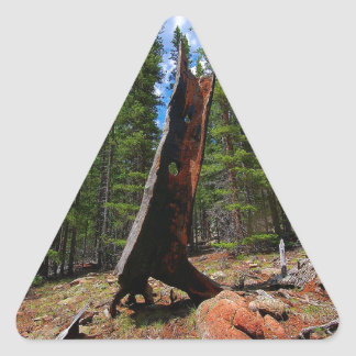 Nature Trees Hollow Caber Triangle Sticker