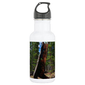 Nature Trees Hollow Caber Water Bottle