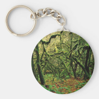 Nature Trees Mossy Times Key Chains