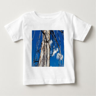 Nature Trees Sleepy Hollow Tshirts
