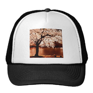 Nature Trees White Night Trucker Hat