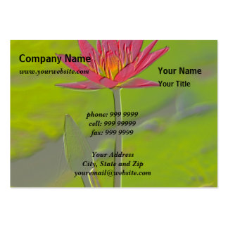 Nature/Untainted Lotus Embossed Business Card