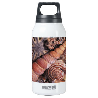 Nature Water Assorted Shells Beach Thermos Bottle