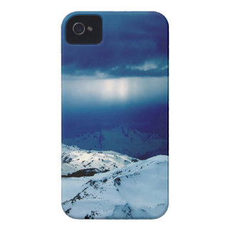 Nature Winter Perfect Whiteout iPhone 4 Case