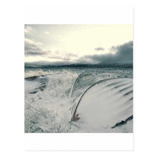 Nature Winter Whiteout Boats Postcard