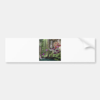 Nature with orchids car bumper sticker