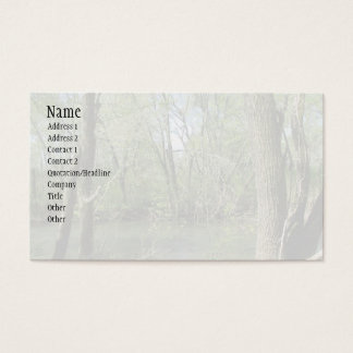 Natures Beauty Business Card