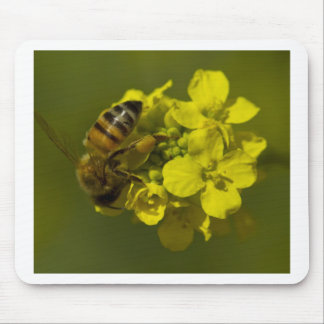 Natures Beauty Mouse Pad