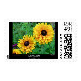 Natures Beauty-Yellow Blossoms Postage