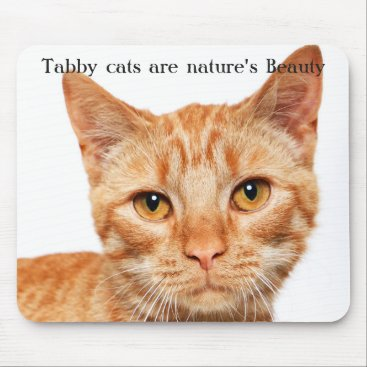 Professional Business Nature's Beauty: Zia Mouse Pad