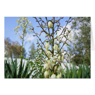 Nature's Bells Greeting Cards