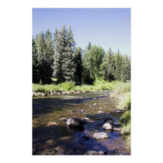 Nature's Best Vail Colorado Gore Creek Poster