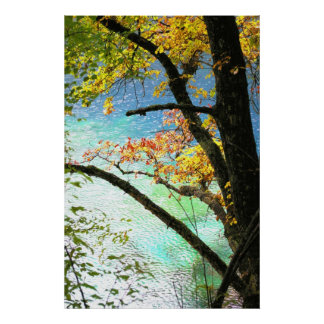 natures canvas poster from 14.95
