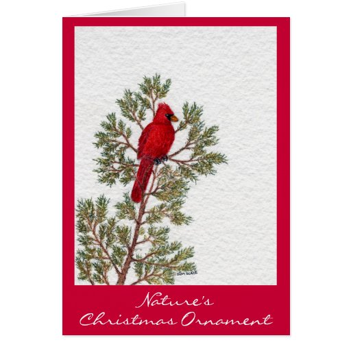 Nature's , Christmas Ornament Greeting Card