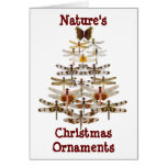 Nature's Christmas Ornaments Greeting Cards
