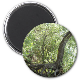 Nature's Creation 2 Inch Round Magnet