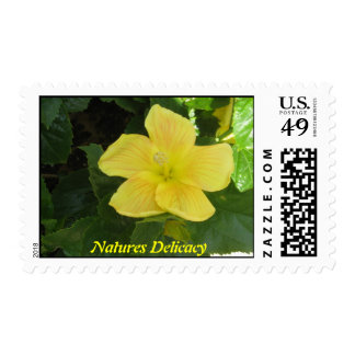 Natures Delicacy Postage Stamps