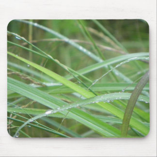 Nature's Episode/ Mouse Pad