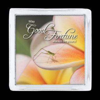 Nature's Folio DAILY INSPIRATIONS Gift Ideas . . . Silver Finish Lapel Pin