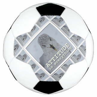 Nature's Folio DAILY INSPIRATIONS Gift Ideas . . . Soccer Ball