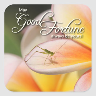 Nature's Folio DAILY INSPIRATIONS Gift Ideas . . . Square Sticker