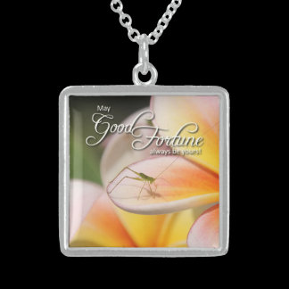 Nature's Folio DAILY INSPIRATIONS Gift Ideas . . . Sterling Silver Necklace