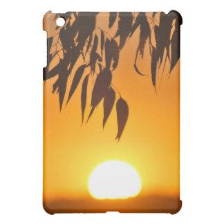 Nature's frame iPad mini cover