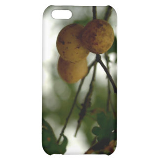 Natures Fruit iPhone 5C Cover