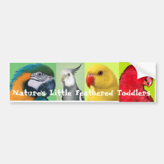 Nature's Little Feathered Toddlers Bumper Sticker