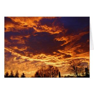 Nature's Morning Display of Art Card