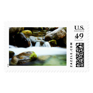 Nature's Music Stamps