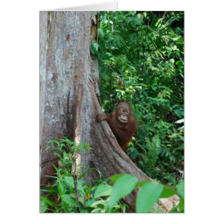 Nature's Original Tree Hugger in Rain Forest Greeting Card