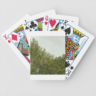 Natures Painting Bicycle Playing Cards