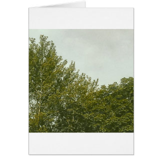 Natures Painting Card
