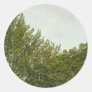 Natures Painting Classic Round Sticker
