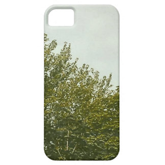 Natures Painting iPhone SE/5/5s Case