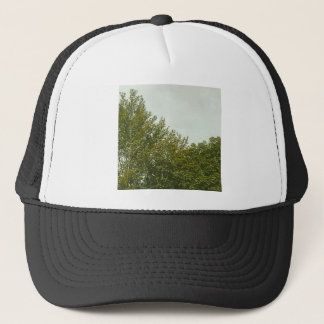 Natures Painting Trucker Hat
