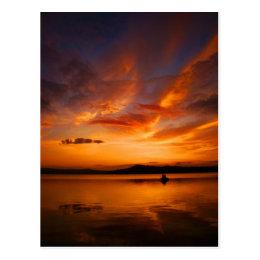 Natures Palette Postcard